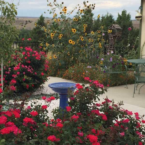 Namaste House Garden